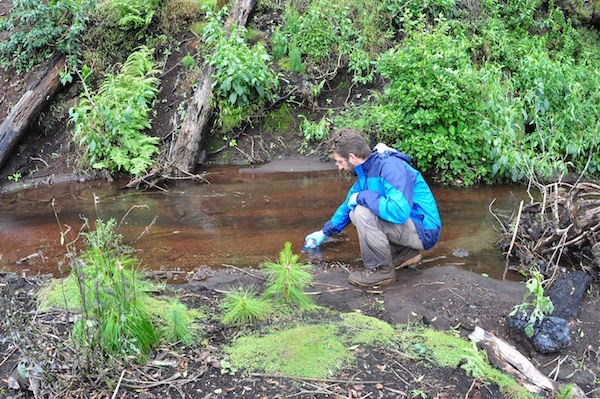 Jonathan Kolby in the field, collecting water samples to check for the presence of amphibian pathogens in Ankaratra. Photo courtesy of Jonathan Kolby.