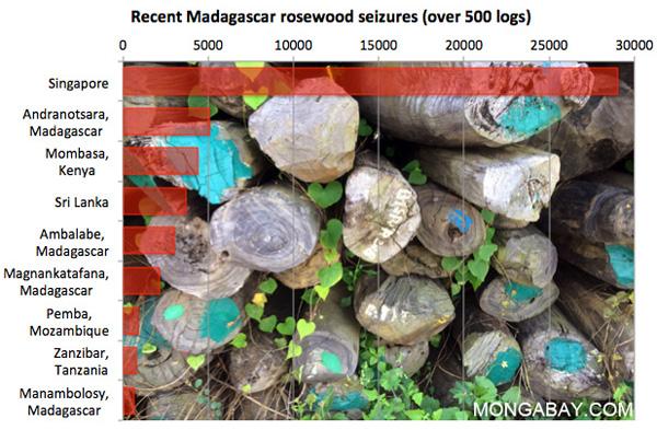 Récentes saisies de bois de rose de Madagascar