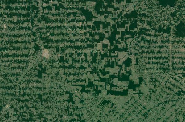 Fragmentation in Rondonia, Brazil