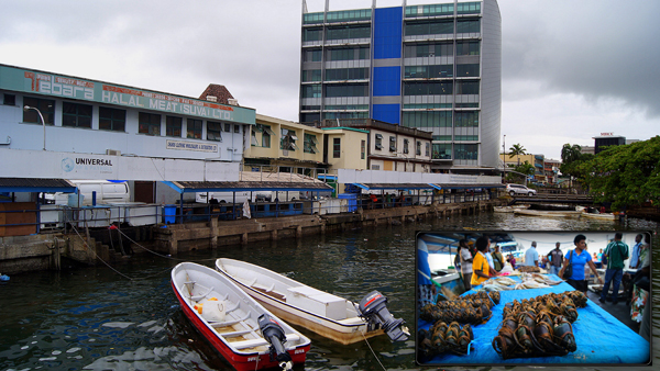 In recent times Suva's fish market is fairly quiet during the week, though that was not always the case. During a busy Saturday morning, aside from sea cucumbers, one can also find crabs and reef fish. Photo by Amy West