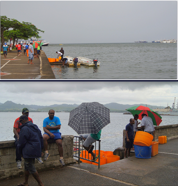 Fishermen in fiberglass boats pull up to an ideal landing along the Suva waterfront to unload sea cucumbers. Onlookers watch while buyers note weights and prices beneath an umbrella. Photo by Amy West