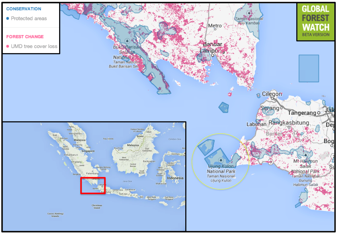 Posisi Ujung Kulon dalam peta. Berdasarkan data Global Forest Watch (GFW), Pulau Jawa telah kehilangan hutannya lebih dari 150 ribu hektare dalam 15 tahun terakhir. Peta: GFW
