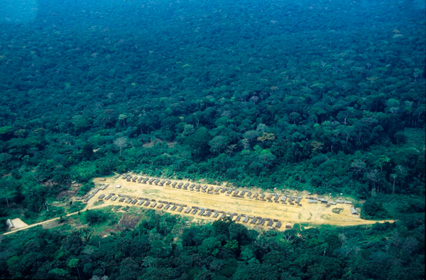Logging camps are often the first human habitations in pristine Congo Basin forests. Photo courtesy of Karl Ammann.