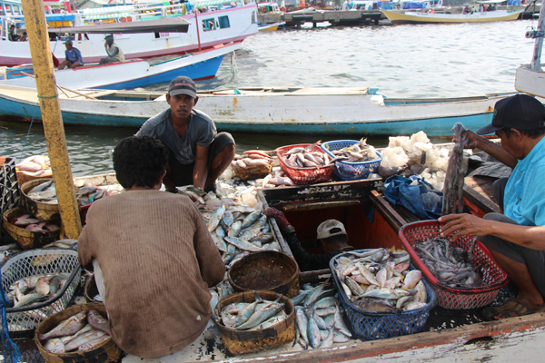 Fishermen unload a week's catch at a harbor in Makassar. Photo copyright © 2014 Melati Kaye.