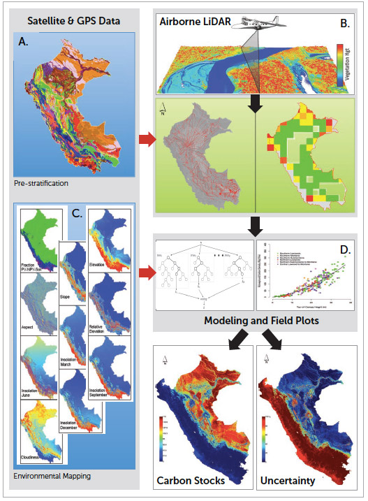 The carbon mapping process
