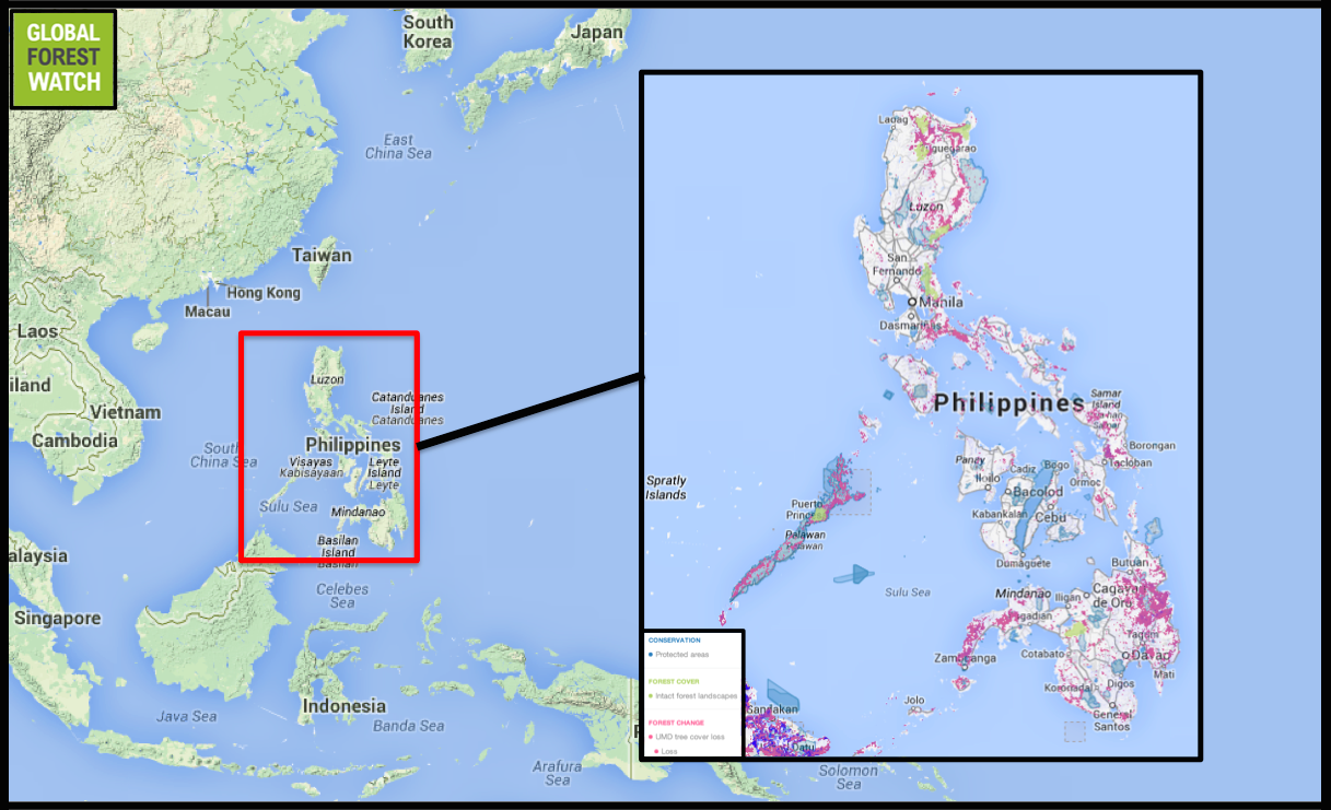 The philippines where megadiversity meets mega deforestation gumiabroncs