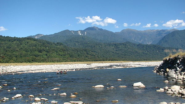 Namdapha National Park in Arunachal Pradash, India. Photo by Rohit Naniwadekar.