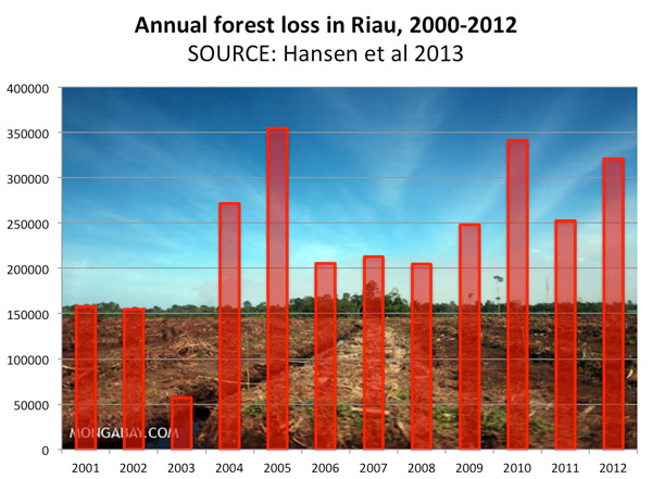 Illegal forest clearing for an oil palm plantation in Riau