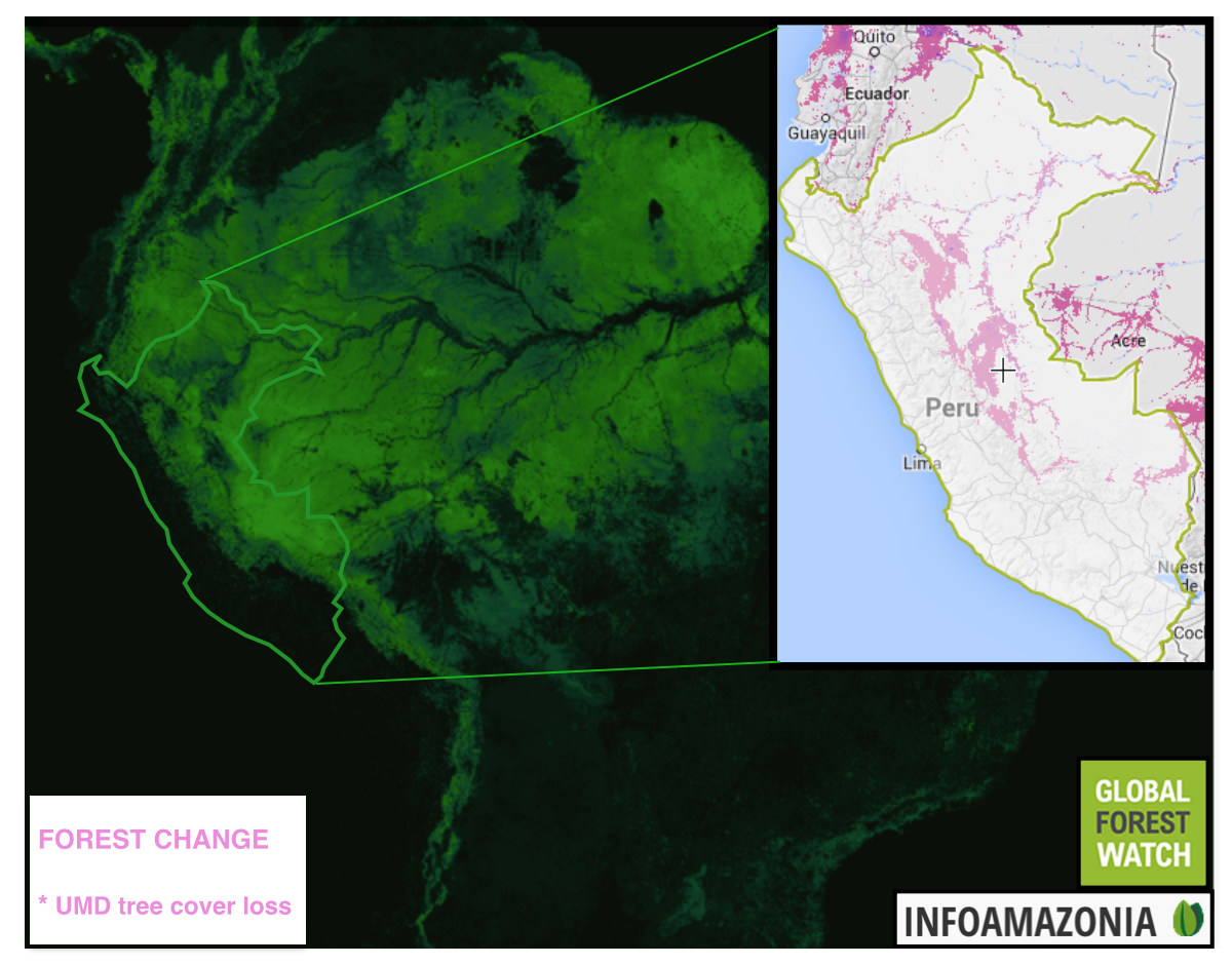 A paradise being lost perus most important forests felled for a map of forest loss within peru from 2001 2012 in relation to overall forest cover in south america data provided by infoamazonia and global forest watch sciox Choice Image