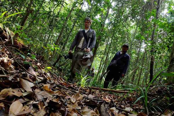 Rhett Butler dans la Province de Riau en Indonésie. Photogaphie: Aji Wihardand.