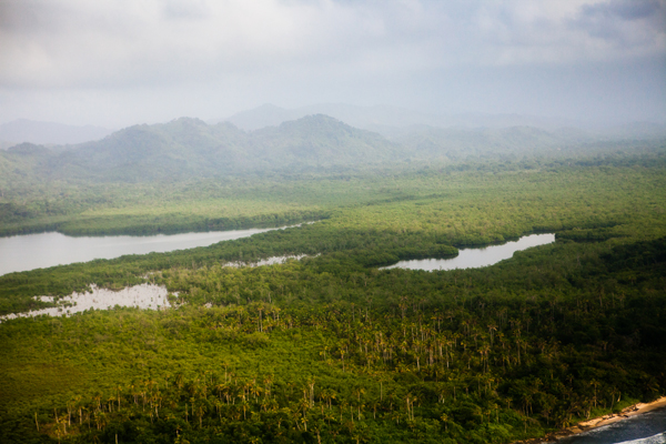 El bosque Kuna de tierra firme, tal y como se veía desde el aire en julio de 2014. Foto por Roberto (Oso) Guerra.