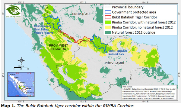 The Bukit Batabuh tiger corridor.