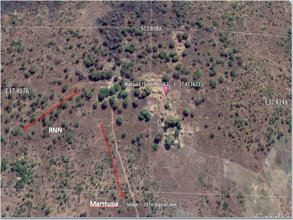 Joint force uses Google Earth to find elephant poaching camps in
