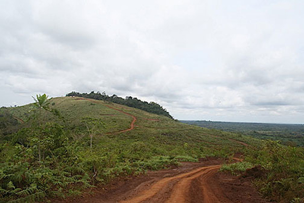 The Zanaga area is a mosaic of grassland and forest, with an estimated 900 great apes living in the mine concession area. Photo courtesy of Zanagairon.com