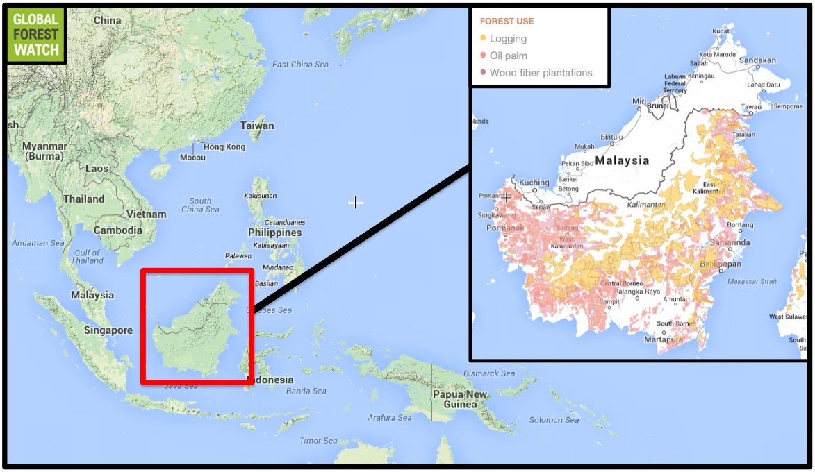Where Is Borneo On The World Map   CYNDIIMENNA