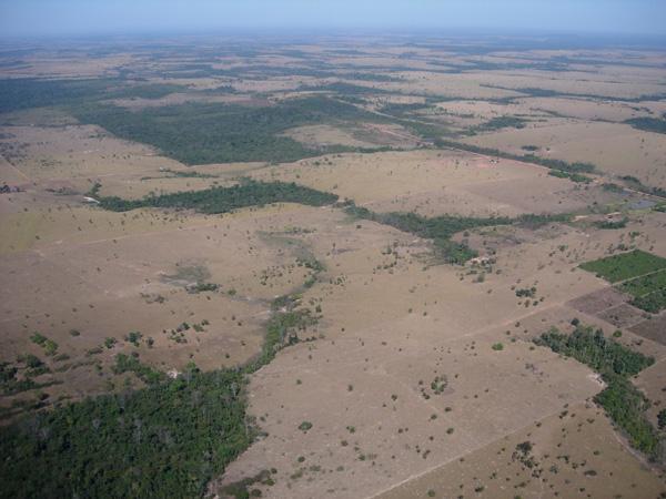 Deforested landscape in Alta Floresta.