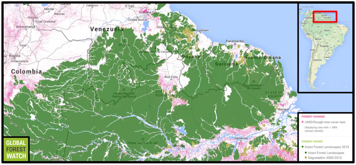 Gold mining expanding rapidly along Guiana Shield, threatening