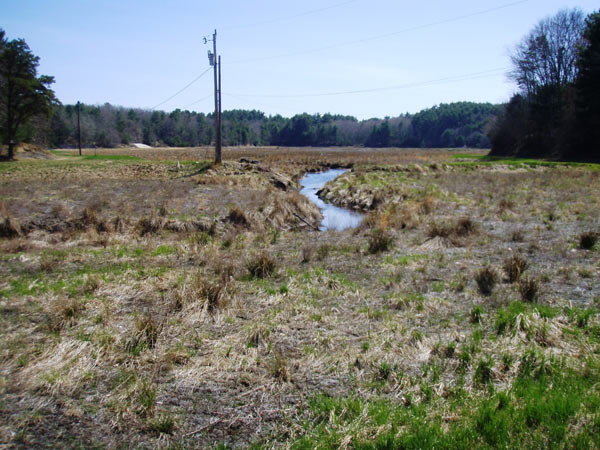 Eel River Headwaters before restoration. Photo credit: Massachusetts Department of Fish and Game