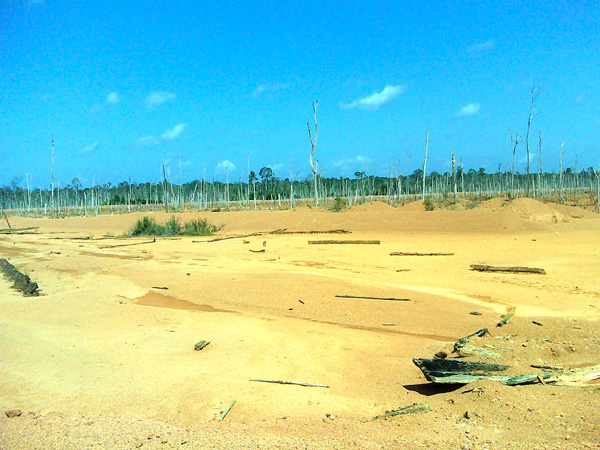 The former bauxite site of PT Karya Utama Tambang Jaya (KUTJ) near Sekucing Labai village in Simpang Hulu, Ketapang, West Kalimantan. Photo: RPHK