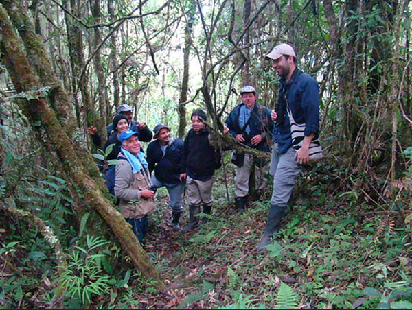 The team on the Arenal trail, Costa Rica, at 2500 m. Photo credit: Andres Cuervo.
