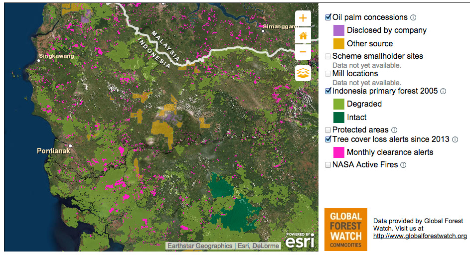 Screenshot Of The Mapping Function Of The Sustainable Palm Oil Transparency Toolkit