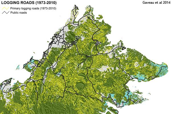 Map of logging roads in Sabah