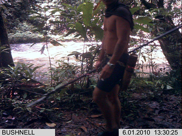 Camera trap image of a hunter in Sarawak. In Gunung Mulu National Park in Malaysia, hunters were detected on 8.3 percent of the days when cameras were deployed. Photo courtesy of Jedediah Brodie.