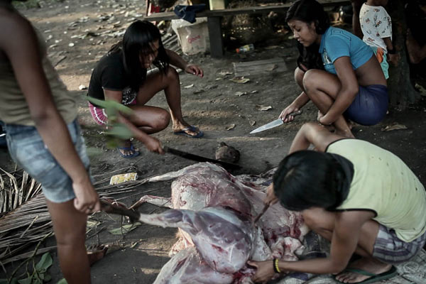 The Munduruku eat different types of game meat found in their territory. In the photo, girls prepare deer for dinner. Photo: Marcio Isensee e Sá