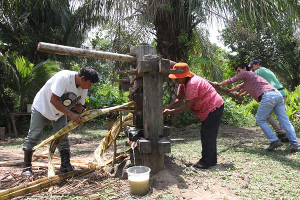Tourists try their hand at pressing juice from sugar cane in San Miguel del Bala, in the Tacana indigenous territory. Photo by Barbara Fraser