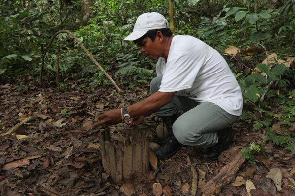 Guide Baldemar Mazaro shows visitors how to set a hunting trap in the forest near San Miguel del Bala, in the Tacana indigenous territory. Photo by Barbara Fraser