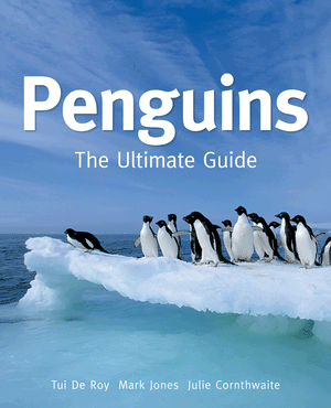 Penguins: The Ultimate Guide – book review