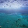 Great Barrier Reef near Cairns, Australia