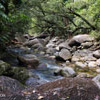 Rex creek in Mossman Gorge, Australia