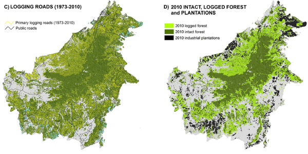Four decades of forest persistence, clearance and logging on Borneo. Forest (dark green) and non-forest (white) in year 1973, and residual clouds (cyan) in Panel A. Areas of forest loss during 1973–2010 (red) in Panel B. Primary logging roads from 1973–2010 (yellow lines) in Panel C. Remaining intact forest (dark green), remaining logged forest (light green), and industrial oil palm and timber plantations (Black) in year 2010 in Panel D.