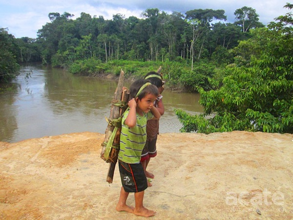 Matsés boy carrying firewood