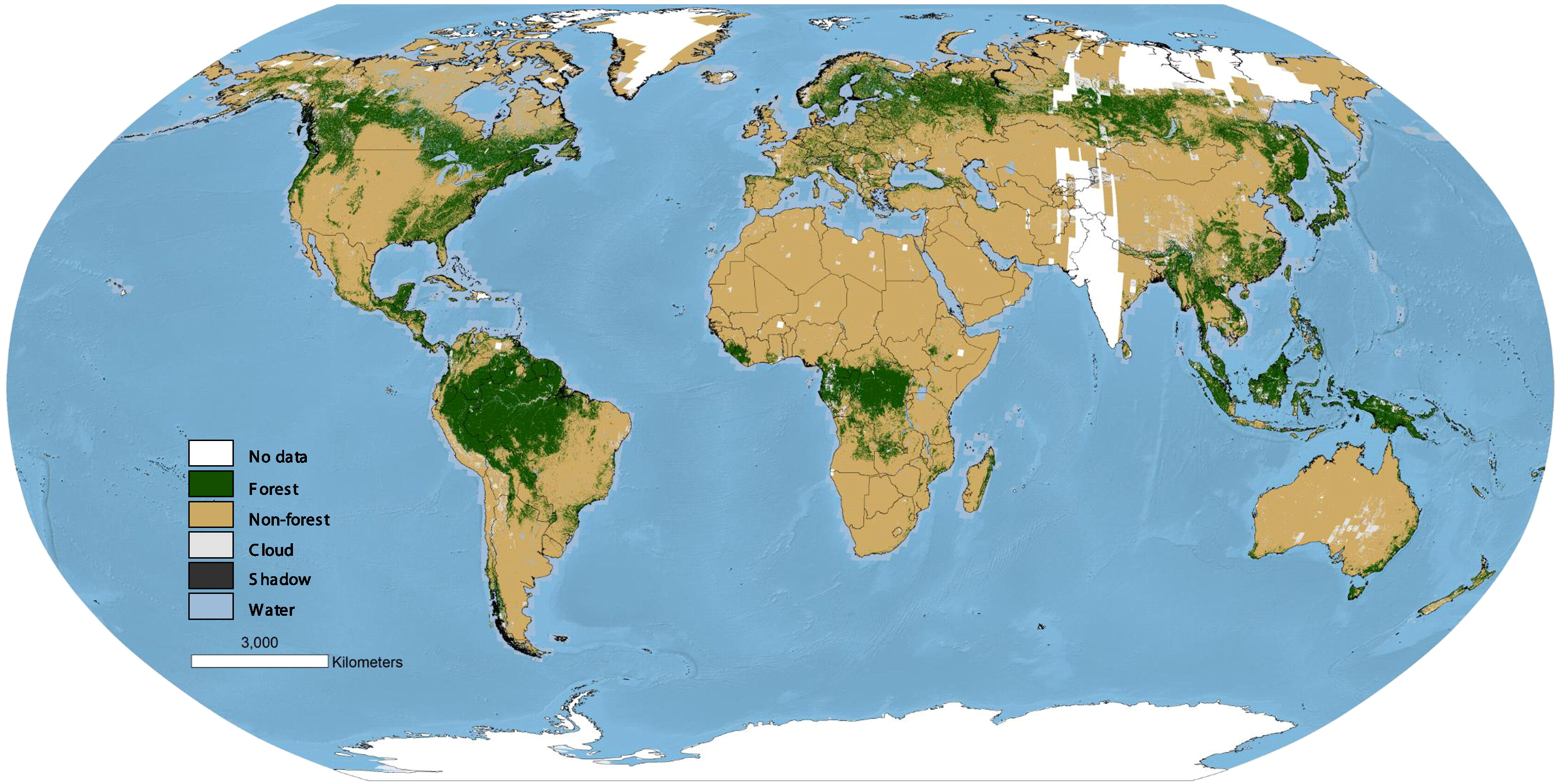 researchers create global map of worlds forests circa 1990