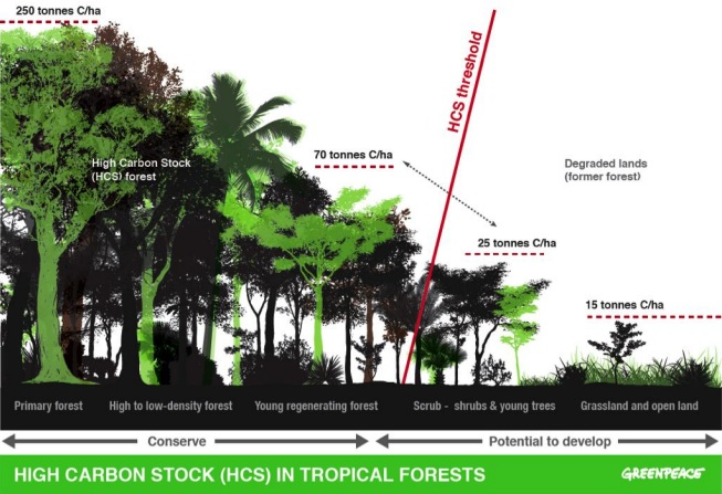 Chart showing the definition of high carbon stock forest versus secondary forest, scrub and grassland.