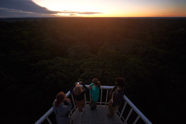 A view of the rainforest canopy from a 60 meter tower at CICRA, watching the sun set and birds fly home to roost. Photo credit: Ishaan Raghunandan