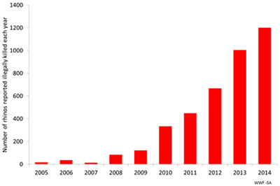 Rhino poaching from 2005-2014. Graph courtesy of TRAFFIC.