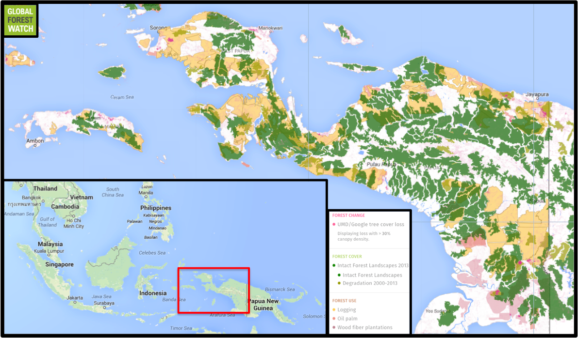 Deforestation may be ramping up in Papua West Papua