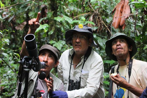 Guide Alex Durand, left, points out a bird to birdwatchers near Peru's Manu National Park and Biosphere Reserve. Tourism brings in revenue to communities near parks in tropical regions of Latin America. Photo credit: Barbara Fraser.