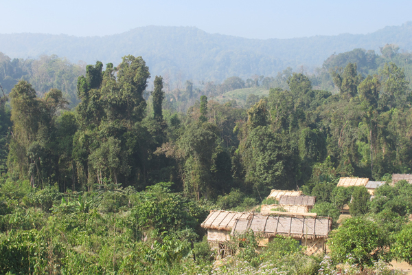 Mosaic landscape showing tropical forest and agriculture in the Chittagong Hill Tracts region.  Photo courtesy of Shahriar Caesar Rahman.