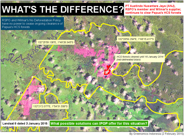 Greenomics map showing recent clearing by Austindo Nusantara Jaya Agri in West Papua, Indonesia