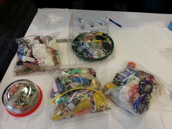 Samples of plastic collected presented by the research team at the AAAS meeting. Credit: Maitri Porecha.