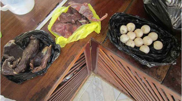 Smoked tapir meat, fresh deer meat & tortoise eggs in Leticia, Colombia. Photo Credit: Nathalie van Vliet