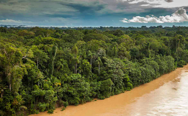 Rainforest along the Las Piedras River from the air. Photo by: Photo by: Tristan Thompson.