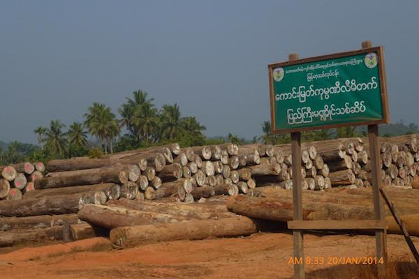 A log yard in Myanmar's southern state of Tanintharyi. Photo courtesy of Forest Trends.