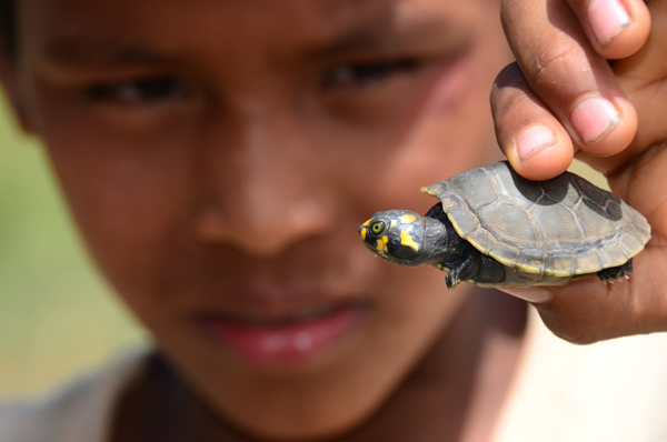 Boy shows off a turtle. Photo by: Alvaro del Campo.