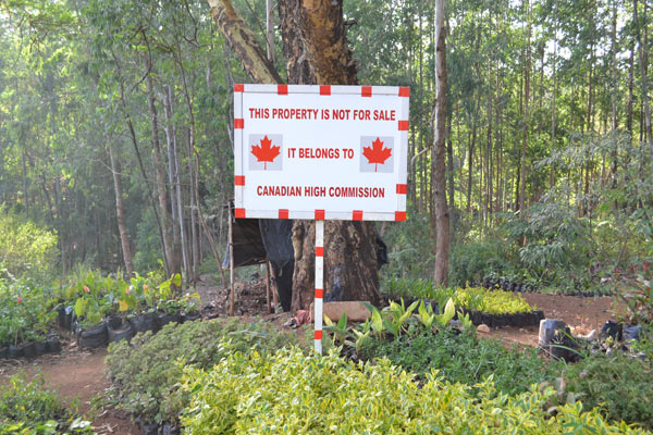 A signpost showing a fencing project meant to save the forest from land grabbers. Photo credit: Protus Onyango.