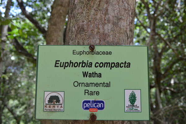 A signpost to show replanting efforts. Photo credit: Protus Onyango.